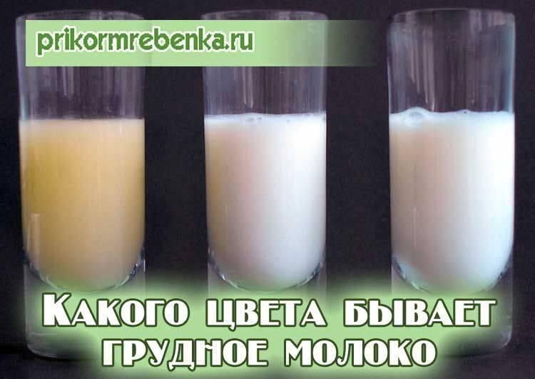 Цвет грудного молока: каким он должен быть, почему бывает жёлтого и других оттенков, симптомы и признаки проблем и другие особенности