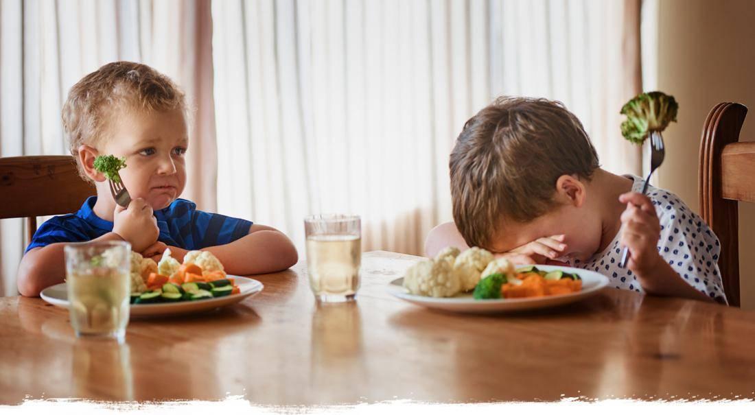 Почему нельзя кормить ребёнка если он не хочет при болезни и в других случаях