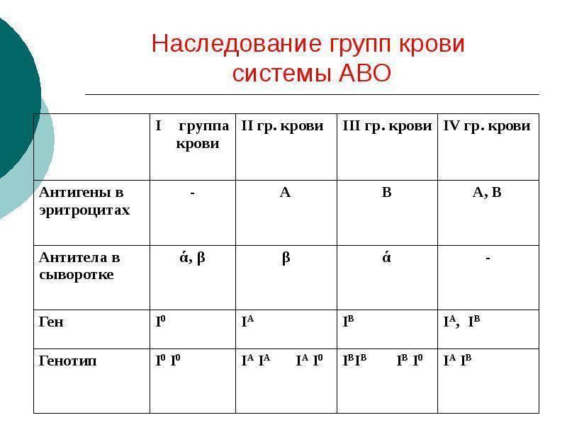 Таблица наследования групп крови и резус-фактора у человека от родителей