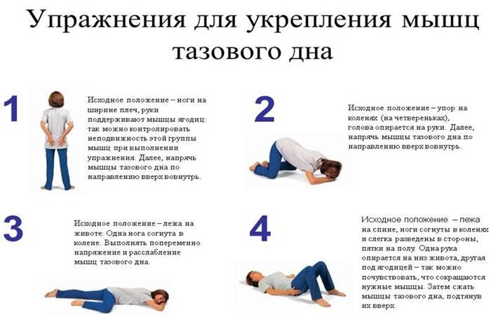 Лучшие упражнения для беременных по триместрам