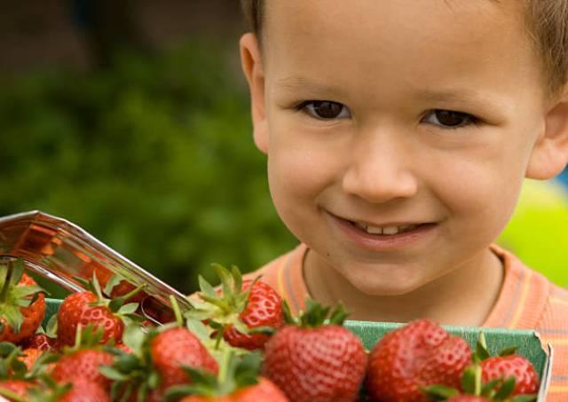 Аллергия на клубнику у взрослых и детей: как проявляется (фото)