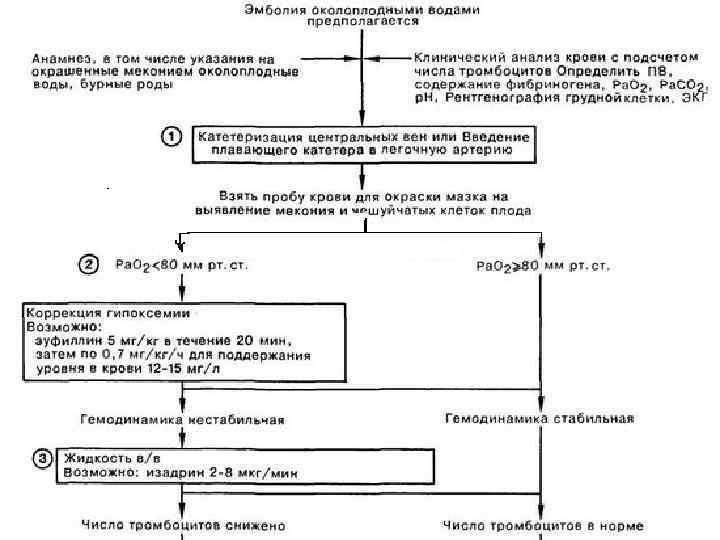 Клинические наблюдения неблагоприятного исхода родов при эмболии околоплодными водами » библиотека врача