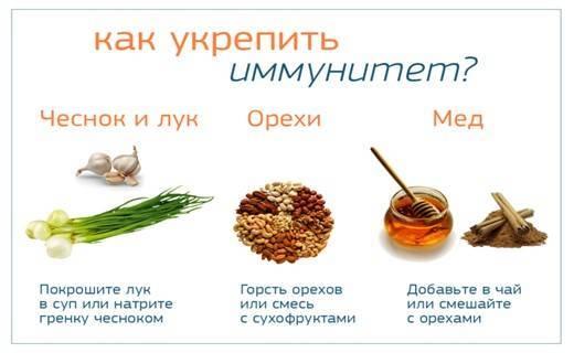 Как поднять иммунитет ребенку - укрепление иммунитета малышей до 4 лет - agulife.ru