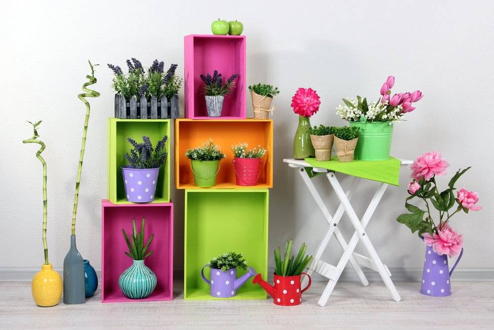 Полезные цветы для детской комнаты
