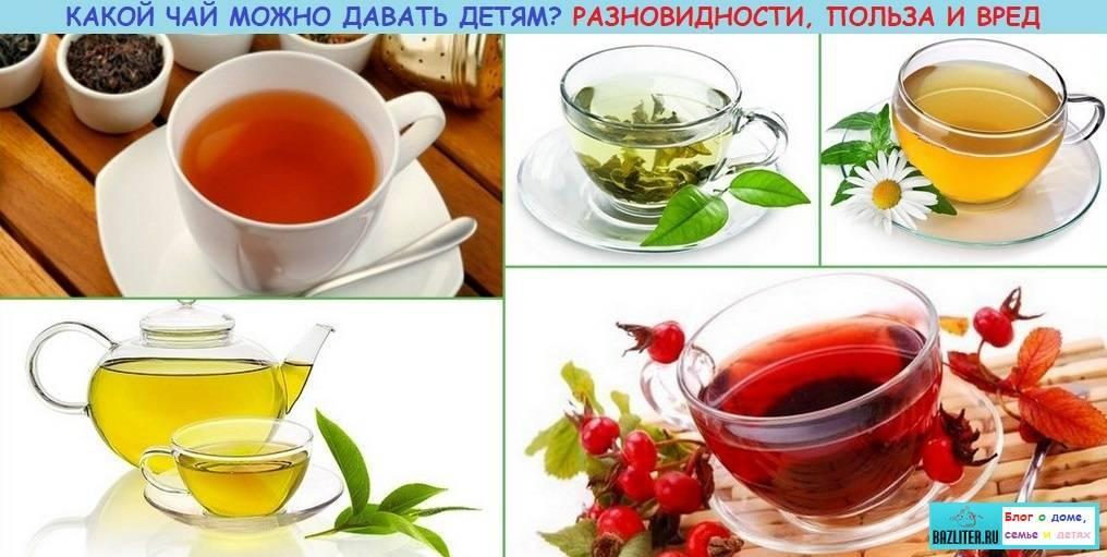 Какие травяные чаи можно давать ребенку