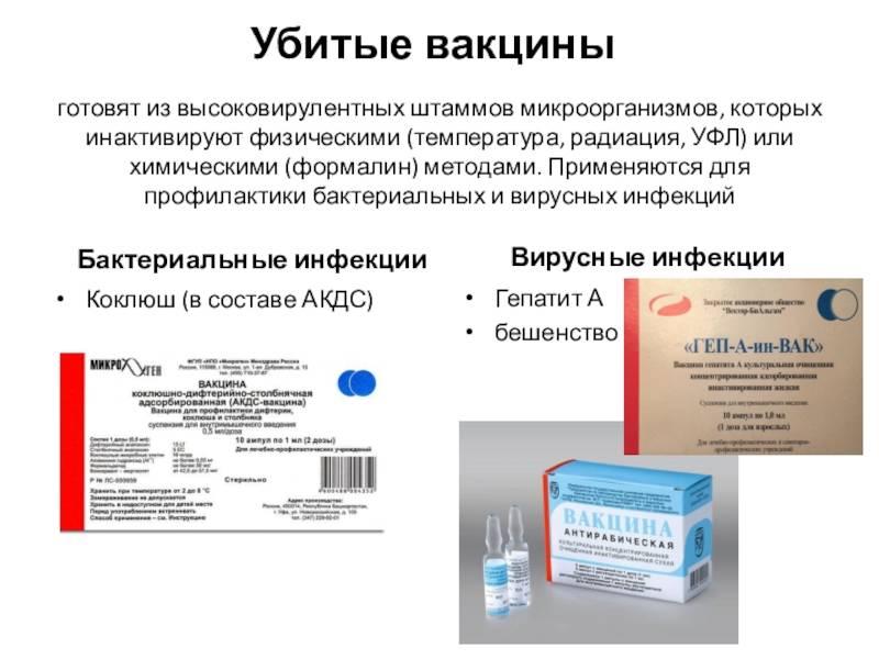 Импортная вакцина акдс: какая лучше, где сделать, виды и аналоги