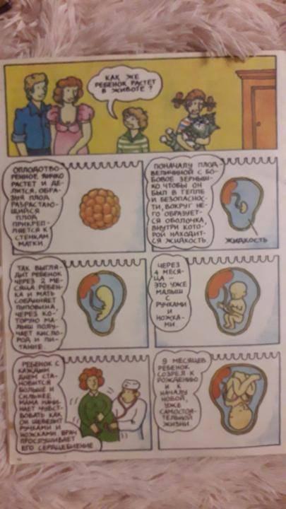 Как объяснить ребенку, откуда берутся дети: что можно и нельзя говорить девочкам и мальчикам