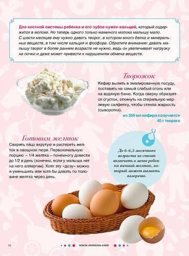 Как и когда вводить желток в прикорм грудного ребенка — можно ли давать яйца грудничку