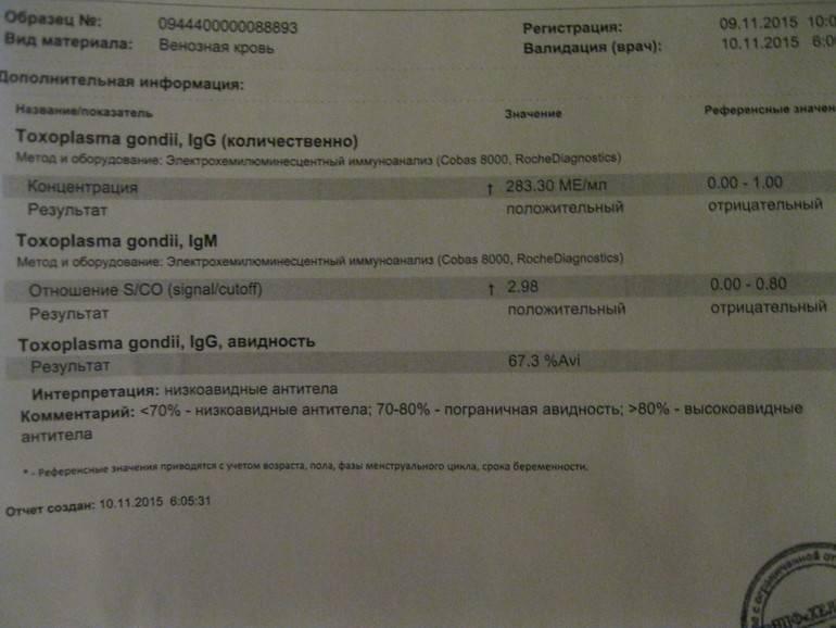 Что делать, если пришел положительный результат анализа covid-19 — санкт-петербургское государственное бюджетное учреждение здравоохранения «городская поликлиника № 78»