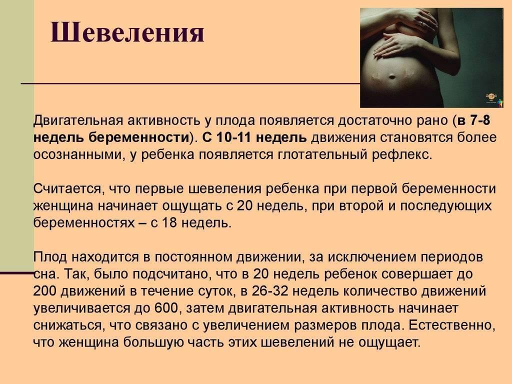 Почему ребенок в животе может перестать шевелиться или делать это очень мало, когда стоит бить тревогу ~ факультетские клиники иркутского государственного медицинского университета