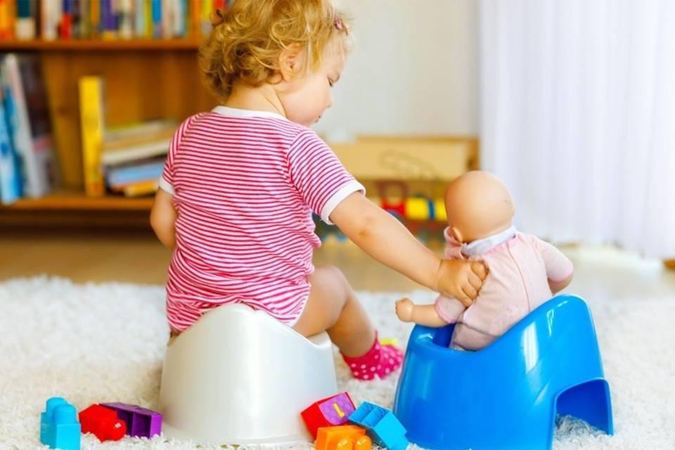 Как приучить ребенка к горшку в любом возрасте: советы комаровского и практический опыт