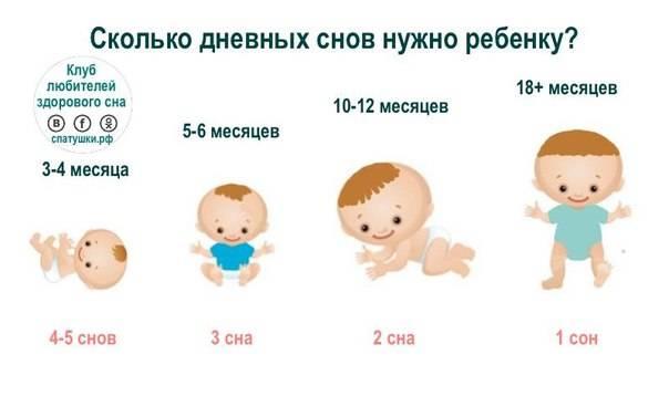 Ребенку 2 недели: развитие, что должен уметь новорожденный, режим дня малыша