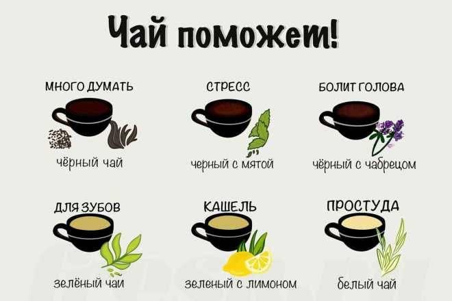 Зеленый чай детям — польза и вред