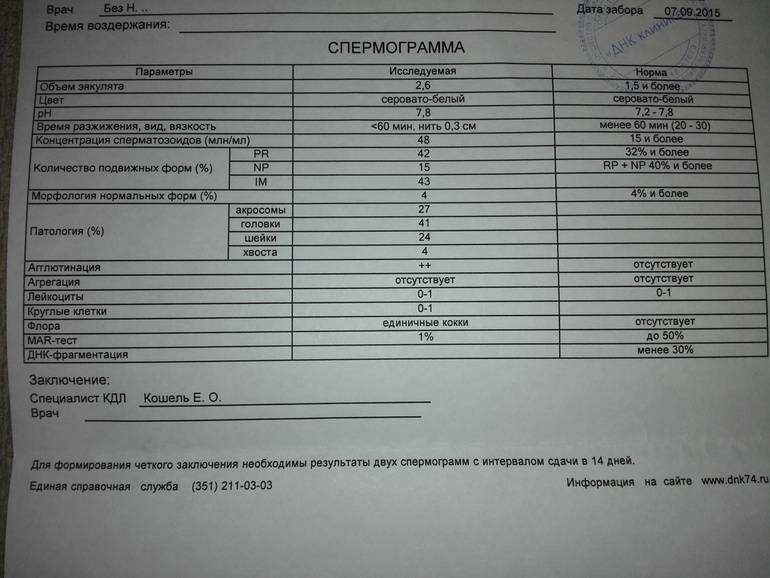 Электронно-микроскопическое исследование сперматозоидов (эмис)