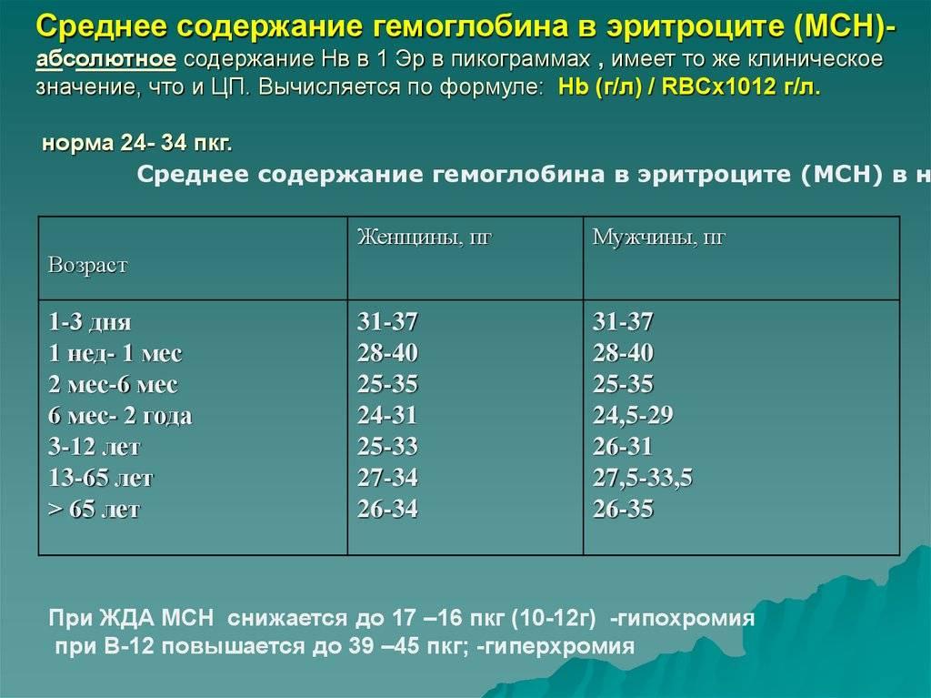 Средняя концентрация корпускулярного гемоглобина - mean corpuscular hemoglobin concentration - xcv.wiki