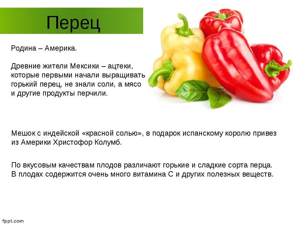 Болгарский перец ребенку: можно ли давать и с какого возраста | rucheyok.ru