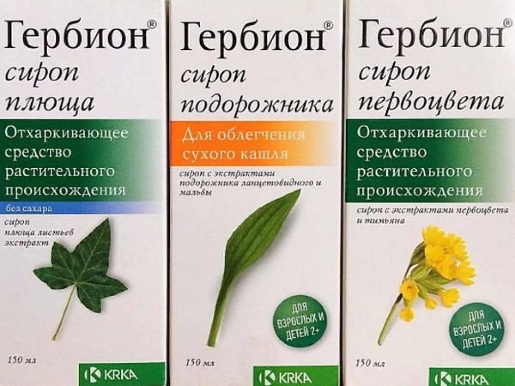 Гербион® - фитоэксперт в лечении кашля   гербион
