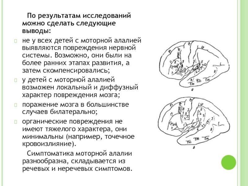 Логопедические занятия и упражнения при сенсорной алалии