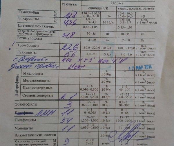 Общий анализ крови (оак) — расшифровка и нормы показателей