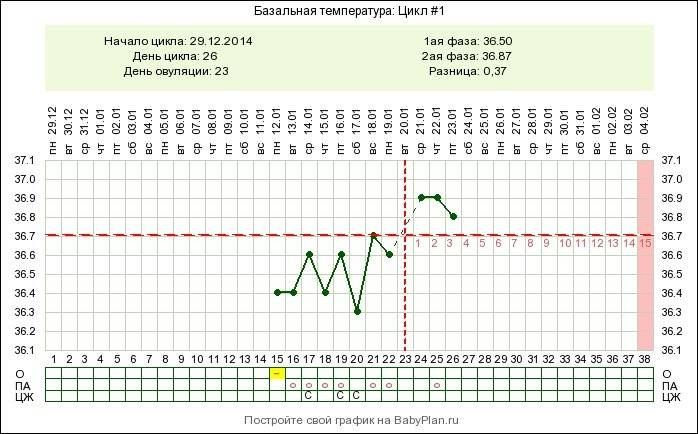 Как измерить базальную температуру для определения беременности правильно