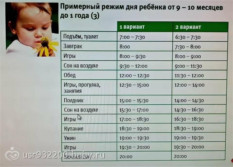 Режим сна и бодрствования для ребенка до года по месяцам.