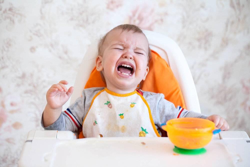Новорожденный мало ест и плохо спит: почему грудничок отказывается от еды?