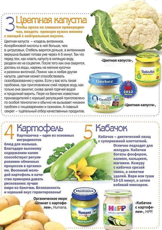 Детское питание - полезные рецепты для малышей с 7 месяцев - agulife.ru
