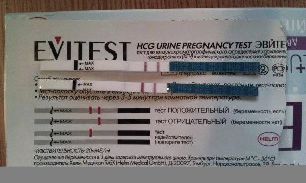 Беременна или нет? узи покажет 5 причин отсутствия эмбриона