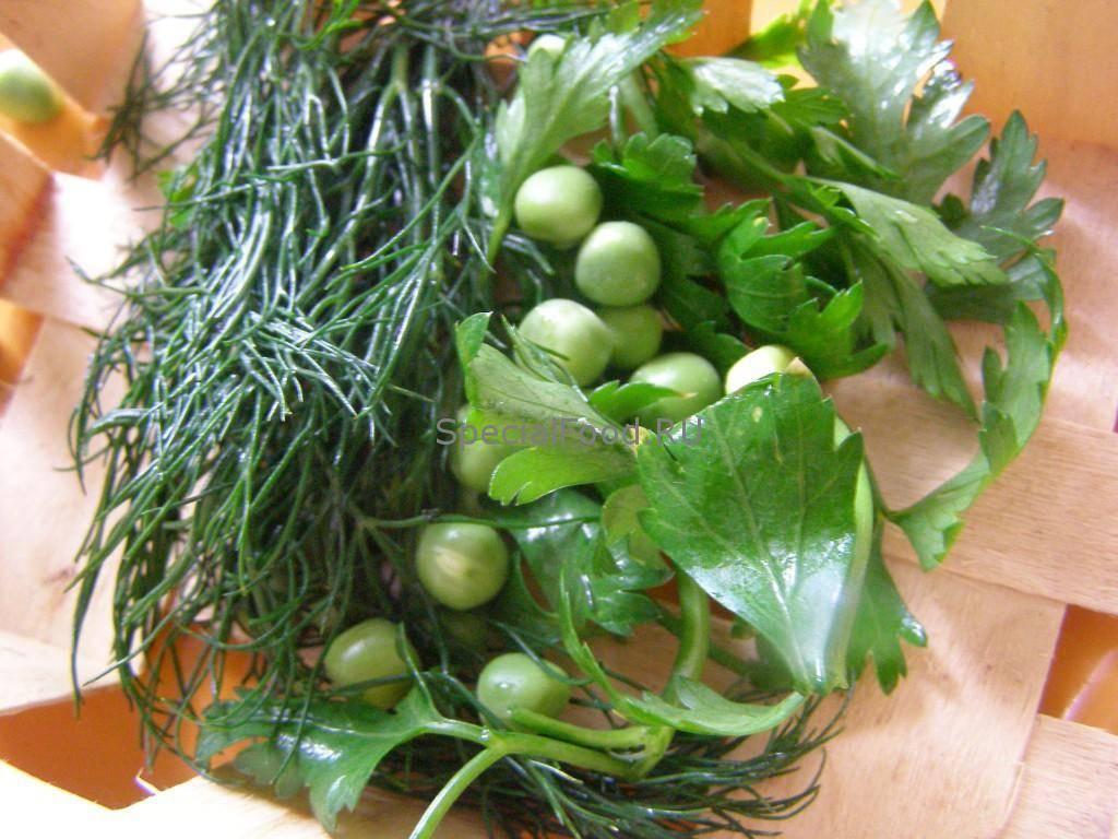 Петрушка при грудном вскармливании, укроп и лук: можно ли зелень кормящей маме