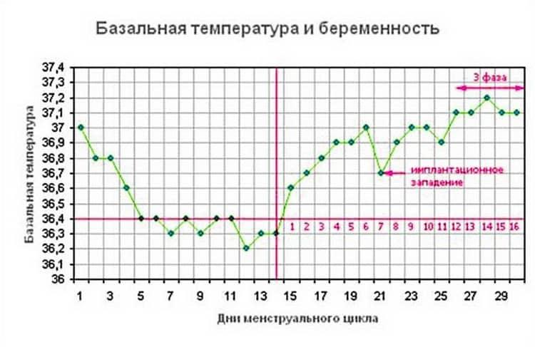 Низкая температура тела при беременности: норма или патология?