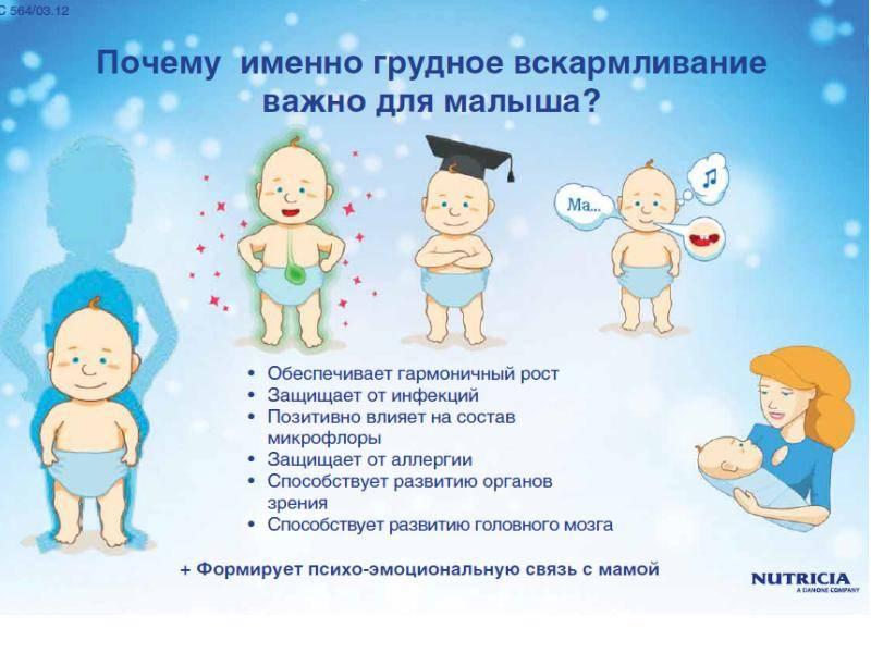 О важности грудного вскармливания - асиз