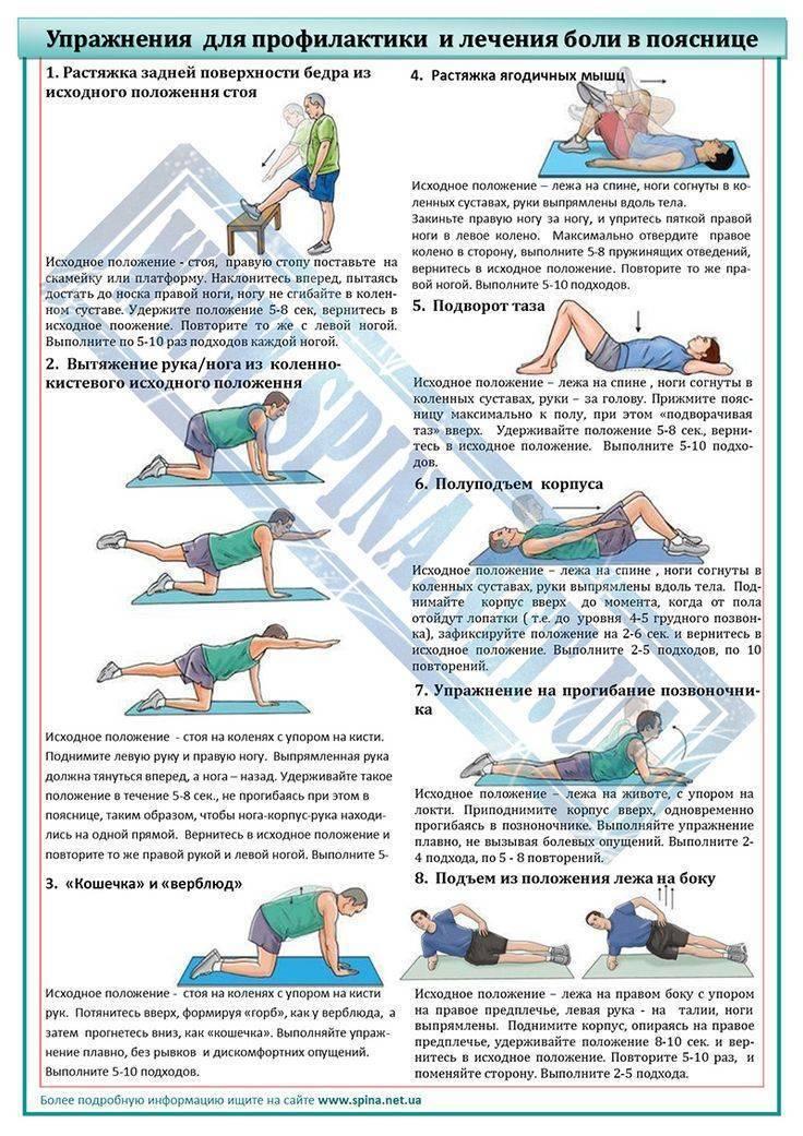 Что делать, если болит спина? к какому врачу обращаться, диагностика, лечение и профилактика болей в спиней