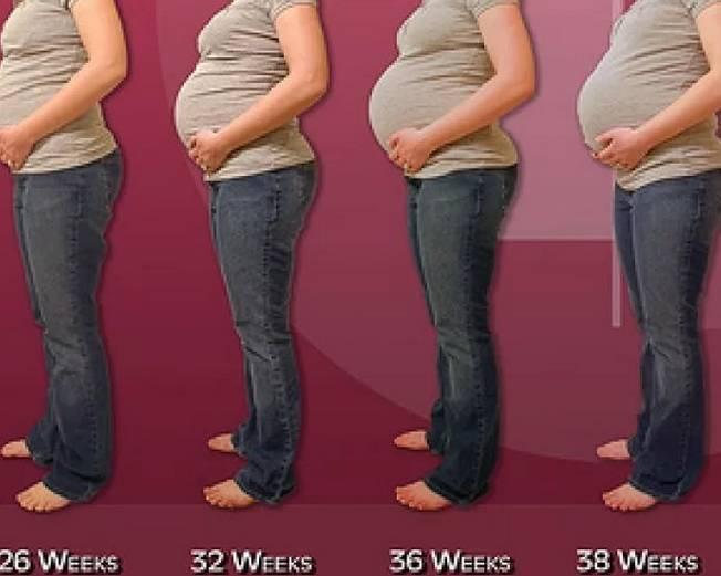 Большой живот при беременности? проверьтесь на пузырный занос