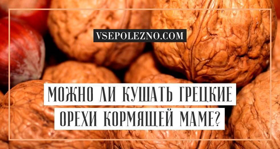 Можно ли грецкие орехи при грудном вскармливании?