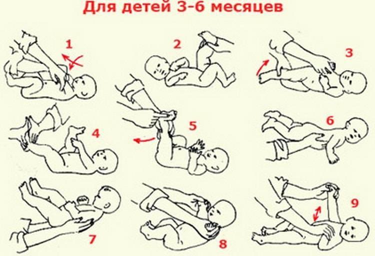 Массаж ребенку 3-4 месяца: видео, гимнастика грудничку до 5 месяцев (упражнения)