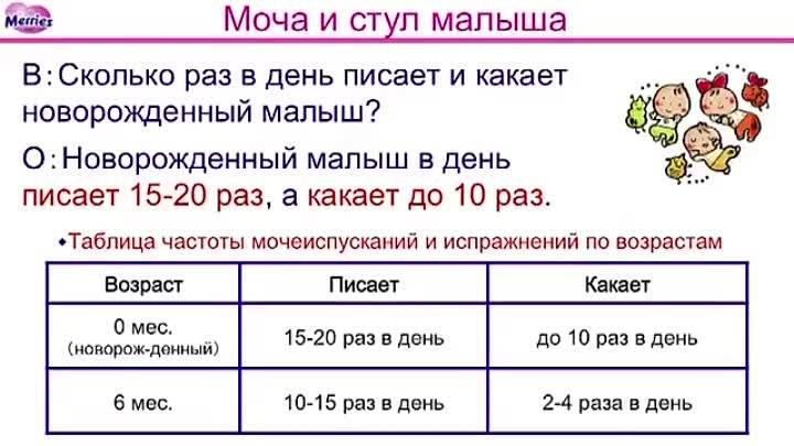Сколько раз должен какать месячный ребенок ~ детская городская поликлиника №1 г. магнитогорска