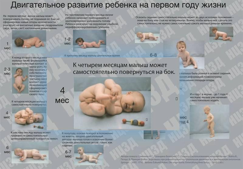 Все о развитии ребенка: месяц шестой   | материнство - беременность, роды, питание, воспитание