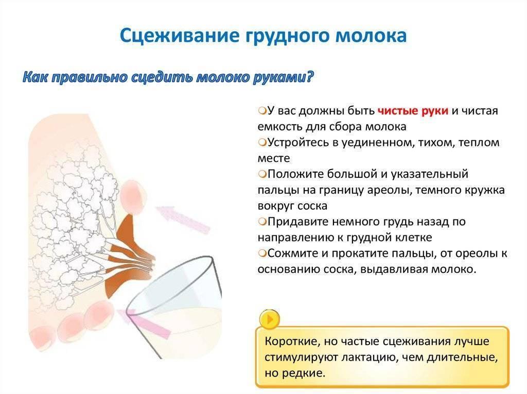 Лактостаз: причины, профилактика, лечение