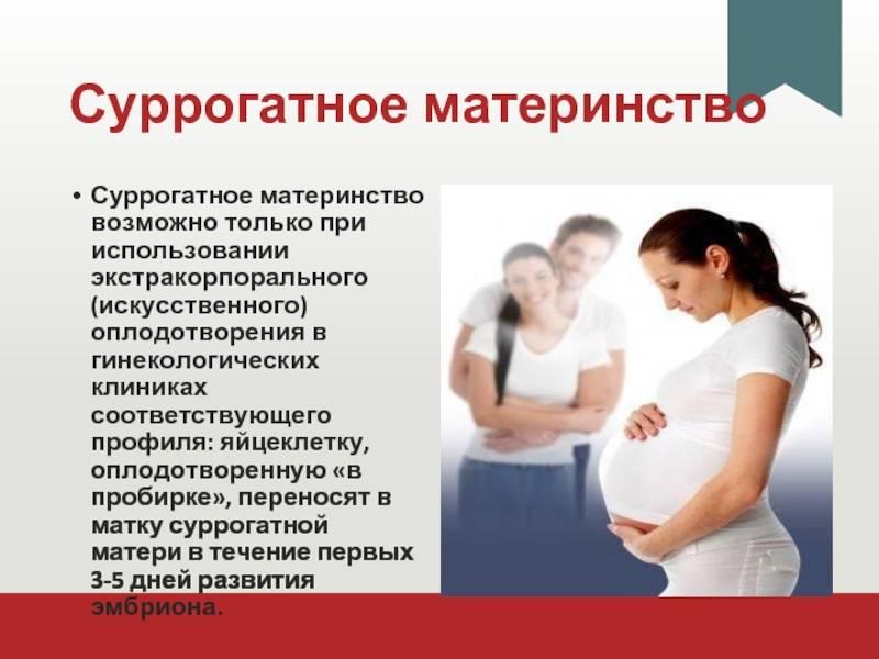 Сколько стоят услуги суррогатной матери в россии с 2021 года