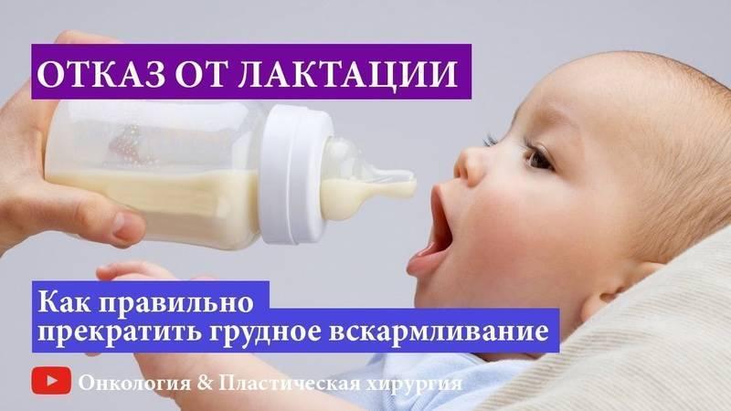 Как прекратить лактацию грудного молока правильно и быстро (комаровский)