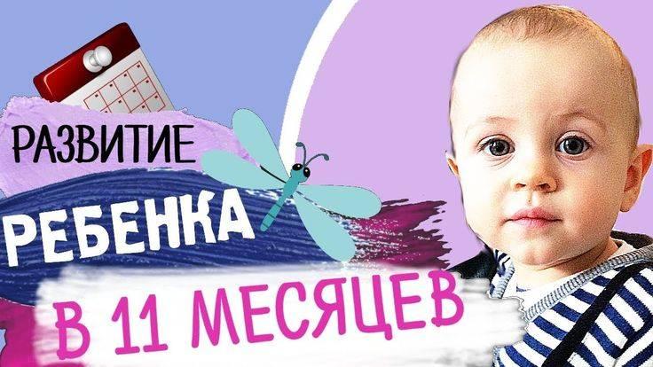 Ребенок в 11 месяцев: развитие