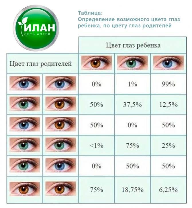 Цвет глаз у новорожденных детей: когда меняется