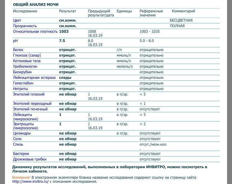 Диагностика протеинурии (памятка для врача)