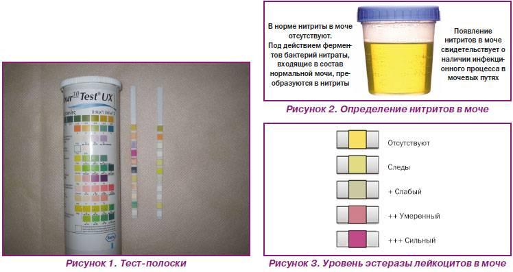 Какие анализы показывают онкологию - сдать анализы на рак в спб | медицинский центр - медпросвет