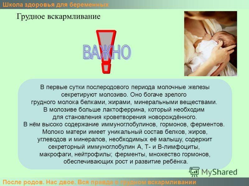 Месячные при грудном вскармливании | o.b.