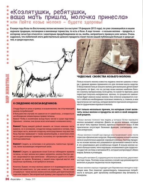 Какое молоко полезнее - козье или коровье? чем отличаются, какое молоко жирнее и лучше, как отличить в домашних условиях одно от другого
