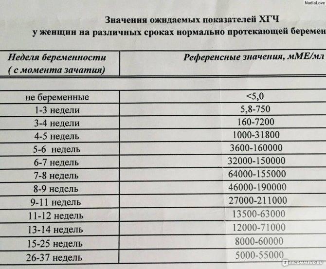 Через сколько дней задержки тест покажет беременность: когда делать тест на беременность после зачатия - детская клиническая больница г. улан-удэ