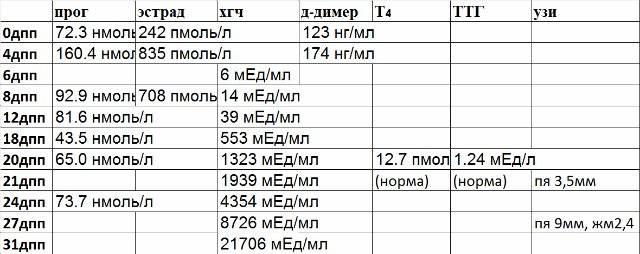 Д-димер при беременности: норма по неделям, таблица после ЭКО и переноса эмбрионов