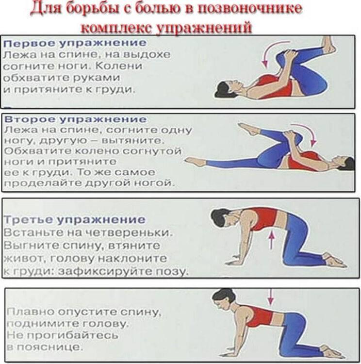Боли в спине. к кому обращаться, если болит спина? к какому врачу идти при болях позвоночника и поясницы? что делать, если защемило спину?