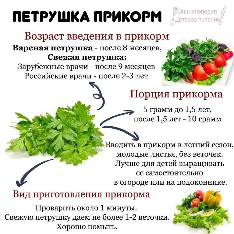 Какую зелень можно при грудном вскармливании?